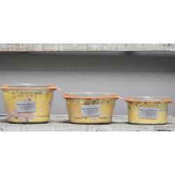 Délice de la Forterie - Spécialité à base de foie gras