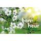 """séjour """" bien-être en Anjou"""""""